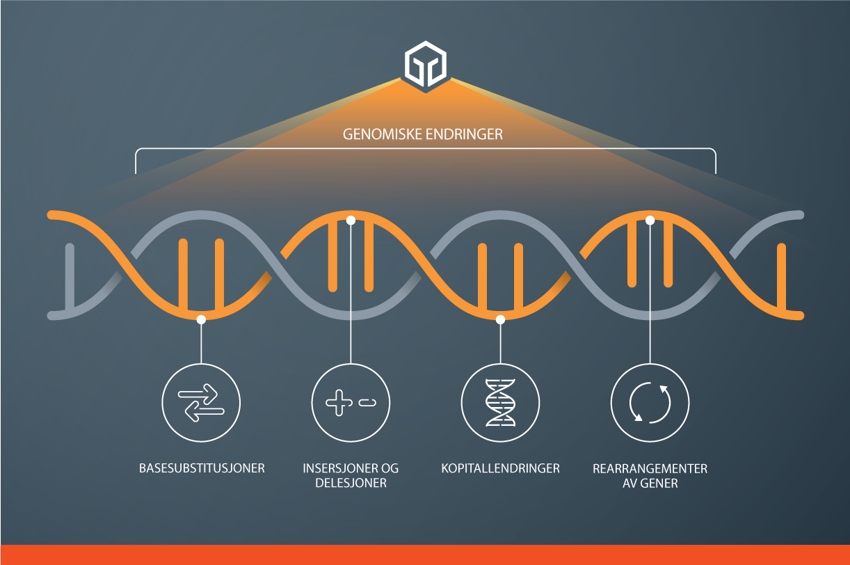 Our comprehensive genomic approach broadly analyses the tumour genome to identify clinically relevant alterations